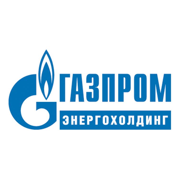ООО «Газпром энергохолдинг»